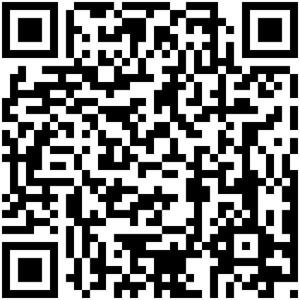 RozalieHirs-2013-Curvices-Download-soundapp-Barcode-QR