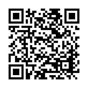 141106-RozalieHirs-Curvices-Den-Bosch-QR-code