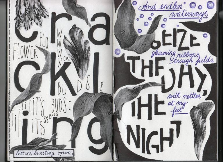 sightbook #1 (2020), zebra poetry film festival, berlin – world premiere